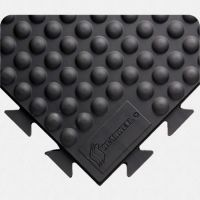Rejuvenator Domed Interlocking Tile